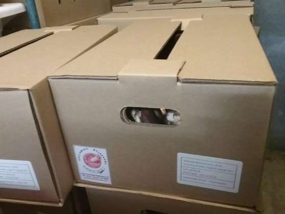 bulk boxes with label