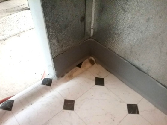chamber interior drainage